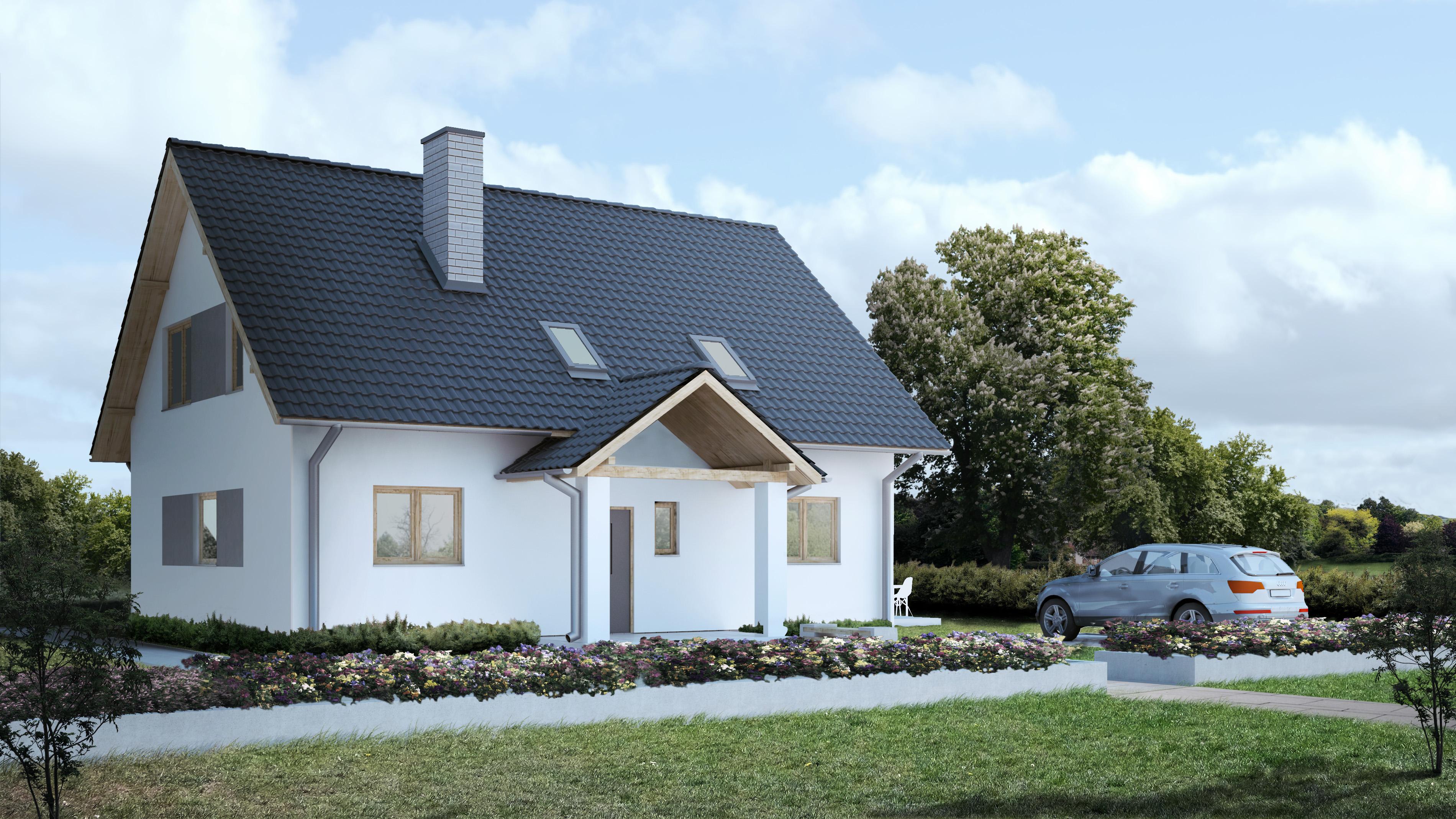 Wiejski domek N